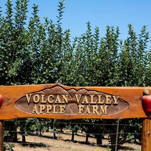 Photo uploaded by Volcan Valley Apple Farm
