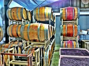 Photo uploaded by La Mesa Wine Works