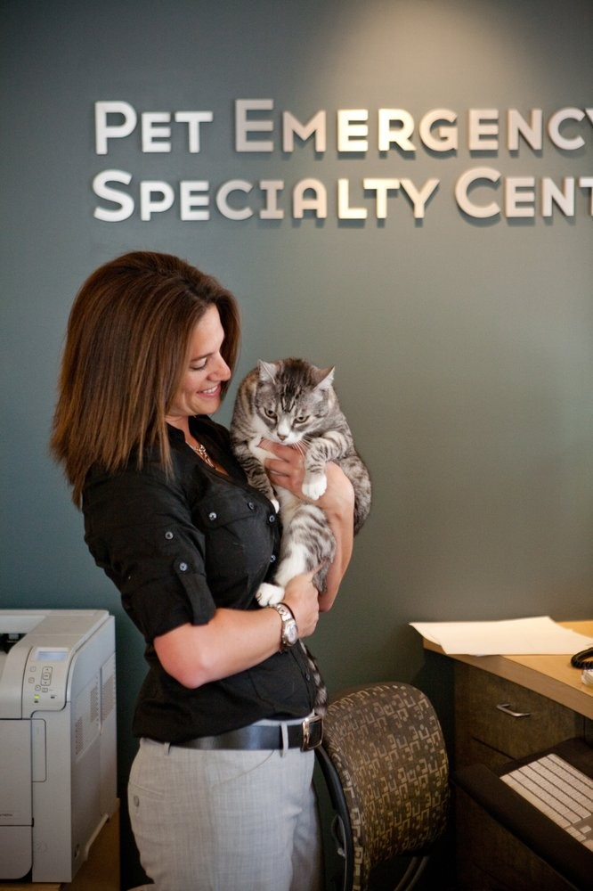 Photo uploaded by A Pet Emergency & Specialty