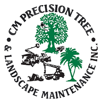 Photo uploaded by Cm Precision Tree & Landscaping