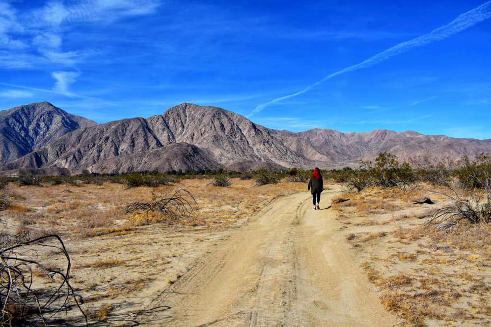 Picture for Borrego Springs, CA
